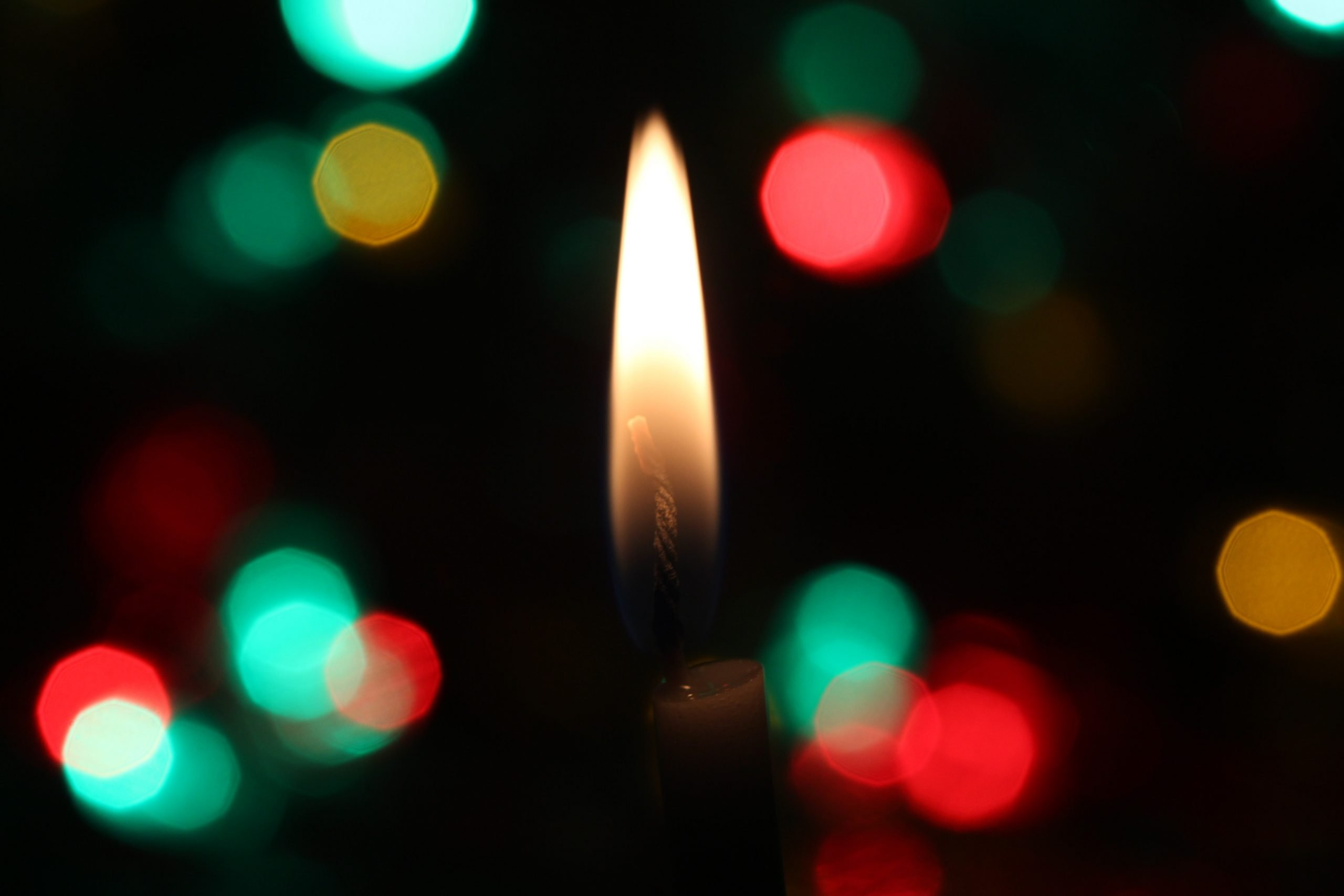 Navidad Extravaganza